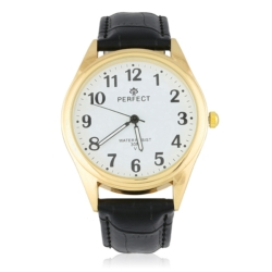 Zegarek męski - Z399