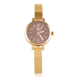 Zegarek damski na bransolecie Z3014